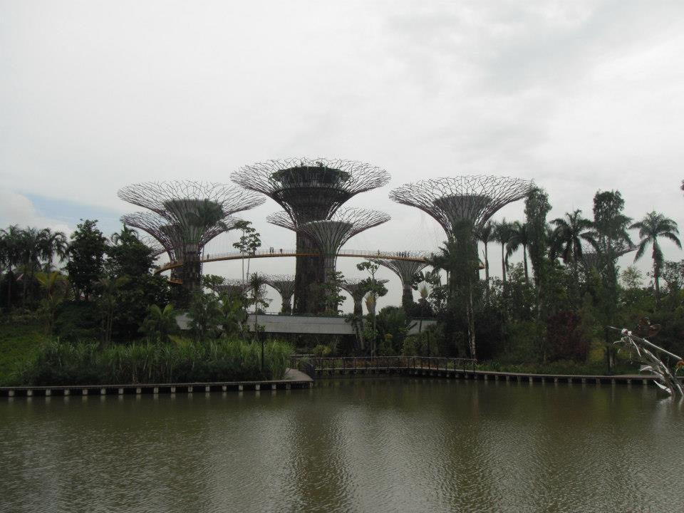 5-singapore